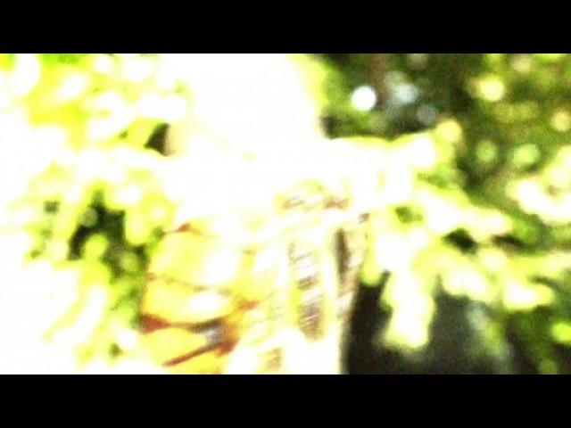 Видео к фильму «C.S.I. Место преступления»
