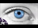 Shinnobu - Morphos (Enigma Chillout Video)