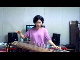 Voodoo Child-Jimi Hendrix Gayageum ver. by Luna