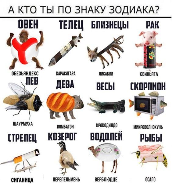 гороскоп кто есть кто аэропорту Внуково произошёл