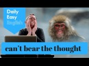 Learn English Daily Easy English 1127 can't bear the thought