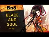Blade and Soul (BnS/B&S): краткий обзор ММОРПГ онлайн-игры, где поиграть