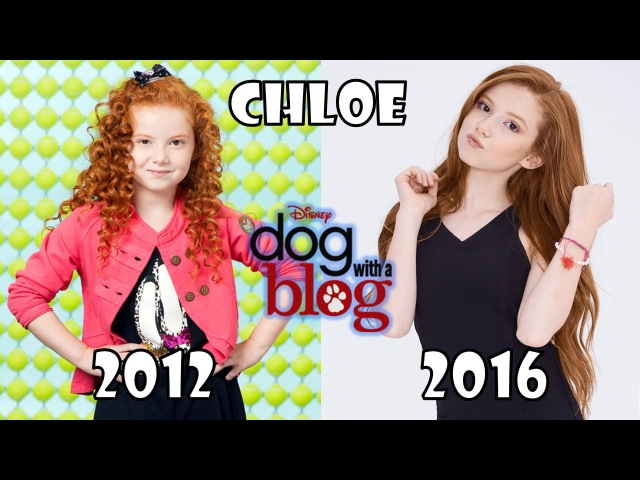 Dog with a Blog Then and Now 2016