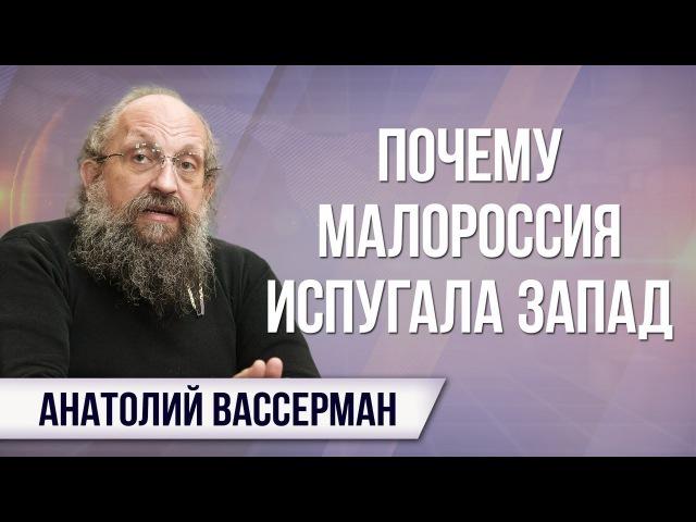 Анатолий Вассерман. Как партнёры испугались Малороссии и чем опасны заявления ...