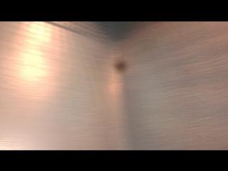 Лифт на Пухова 138. Вандализм