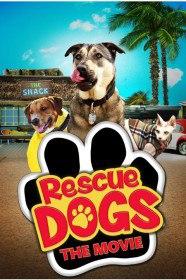 Собаки спешат на помощь / Rescue Dogs (2016)