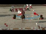 Bernhard Maier riding Paddys Darco in a 1.40m class at CSI1 Wiener Neustadt