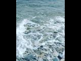 _i_r_i_s_h_a_1 video