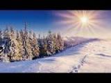 Зима  Зимние пейзажи  Красота обалденная.