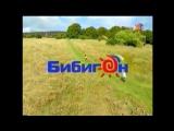 (staroetv.su) Заставки (Россия-Бибигон, 2007-2009)