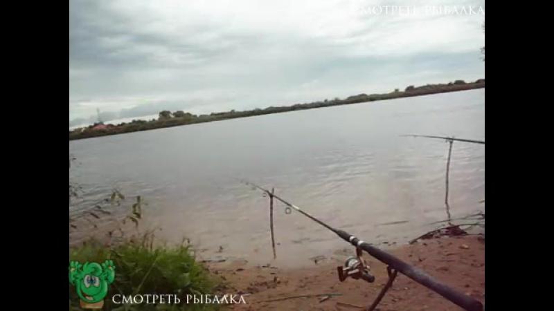 На рыбалку всегда идешь с надеждой на большой улов а на деле...