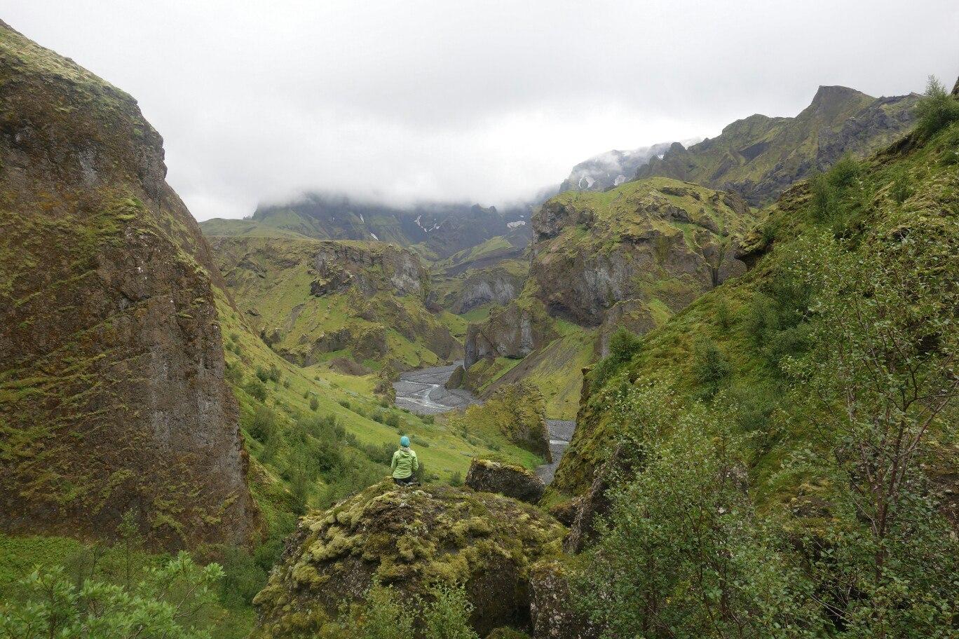 зеленая Исландия в дожде