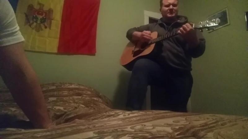Chitara cu sgefulika