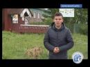 ЛЮДИ СЕВЕРА Мастер резьбы по кости Николай Зачиняев
