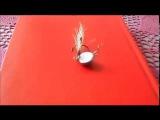 чебурашка тазик-неваляшка