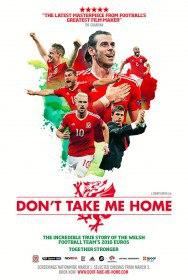 Не забирай меня домой / Don't Take Me Home (2017)