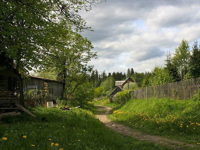 Красота деревни русской!