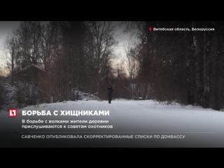 Борьба с российскими волками