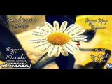 VIDEO HD ОТЧЁТ Эфир Гадание RaidCall 73337  13.09.17