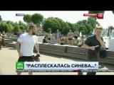 Корреспондента НТВ избили на праздновании дня ВДВ [ https://vk.com/CINELUX ]
