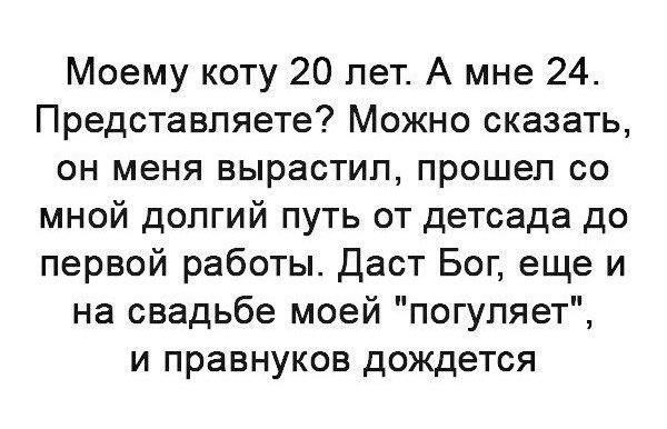 Фото №456247131 со страницы Айдара Ярмухаметова