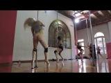 EVA BEMBO 4 en Argentina Buenos Aires @ EXOTIC Fpill Pole Dance