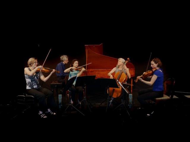 Mozart Eine kleine Nachtmusik Valley of the Moon Music Festival, original instruments 4K