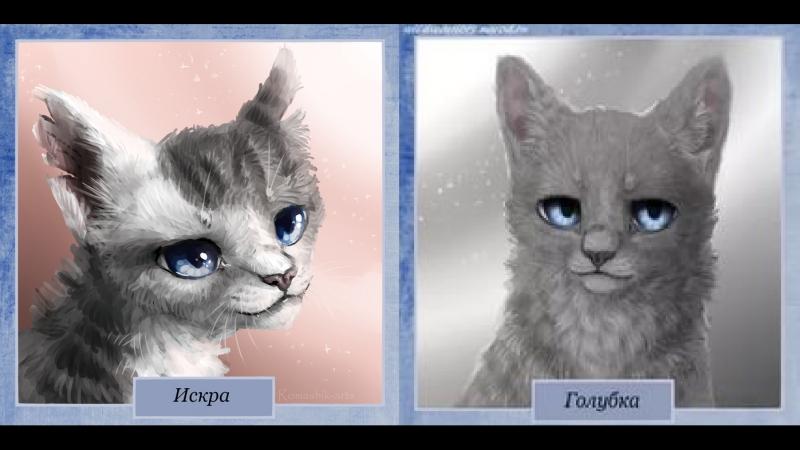 Коты-воители:Искра и Голубка