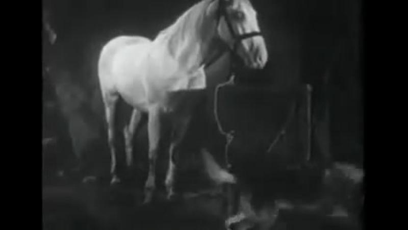 Т/С Приключения Рекса и Ринти: The Strangers Recall 9 серия (1935г)