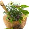 Зеленая аптека - травы Алтая и здоровое питание.