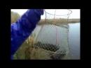 Змееголов пойман на поплавочку