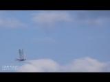 drone robotic bird