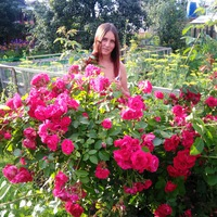 Екатерина Вирченко