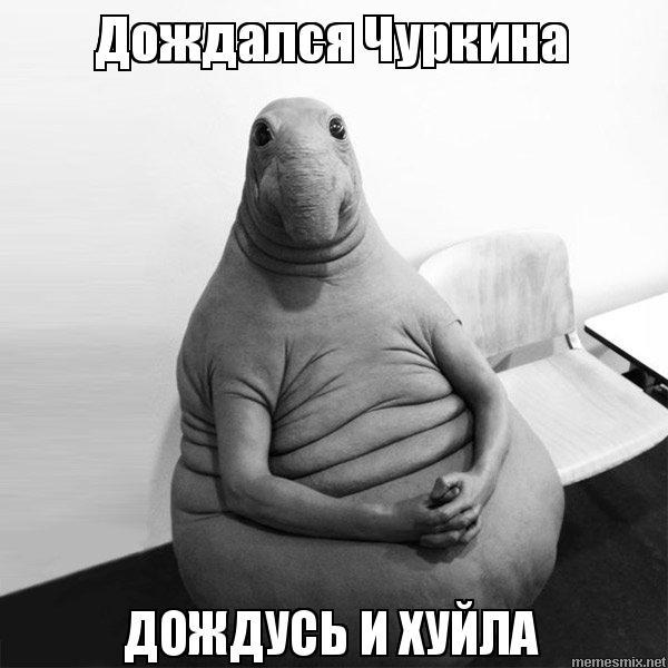 Украина сегодня не может военной силой отвоевать оккупированный Крым, - глава Херсонской ОГА Гордеев - Цензор.НЕТ 1340