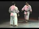 Morio Higaonna Goju Ryu karate Bunkai