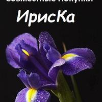 ИрисКа - Совместные Покупки СП Клинцы и область