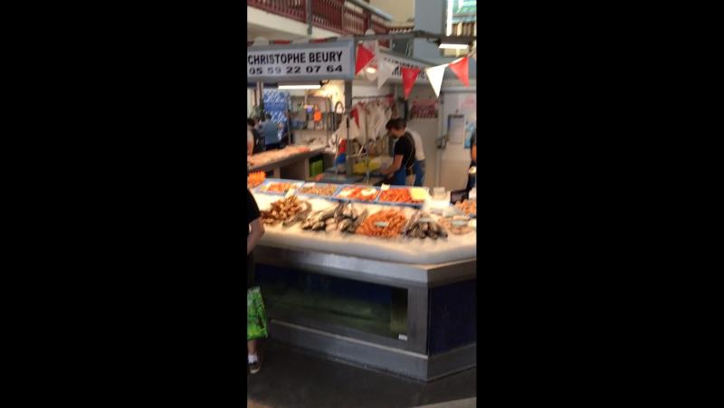 Мама переговорщик на английском. Рыбный рынок во Франции.