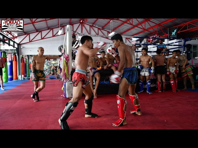 Muay Thai Stars Sparring at YOKKAO - Enjoy the Madness