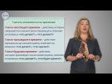 Уроки русского Разбор глагола как части речи
