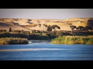 Дикий Нил - река Богов. Часть 1. Удивительная природа Нила. Животные Африки. Докум...