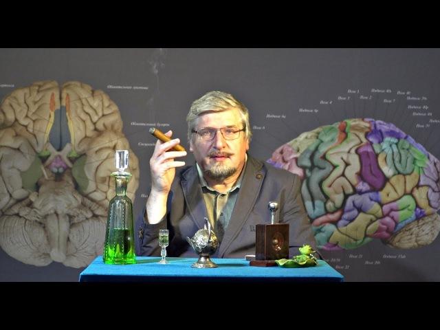 С.В. Савельев: ВОЙНА - биологический процесс