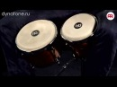 Бонги MEINL MB400WN | Демонстрация звучания | Как играть на бонгах.