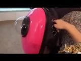 Рюкзак переноска для животных.  AliExpress.