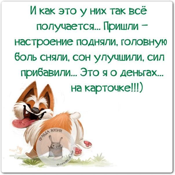 https://pp.userapi.com/c638622/v638622075/331d4/a4yG-PQcAGM.jpg