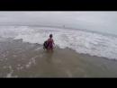 Лохматый нянь Собака не дает ребенку зайти глубоко в море
