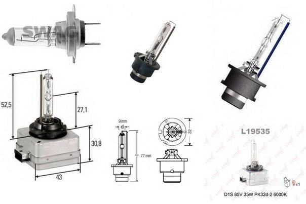 Лампа накаливания, основная фара; Лампа накаливания, основная фара для AUDI A4 кабрио (8H7, B6, 8HE, B7)
