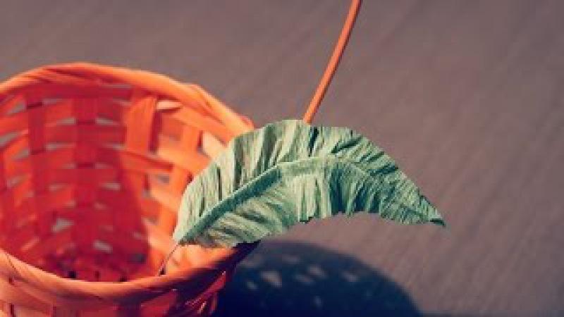 Листок зелени из гофрированной бумаги для украшения свит композиций.