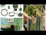 Kale Pantone Inspiration - SpringSummer 2017 Pantone Colors Trends