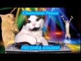 Светлана Рерих  - ПЕСЕНКА КОШКИ
