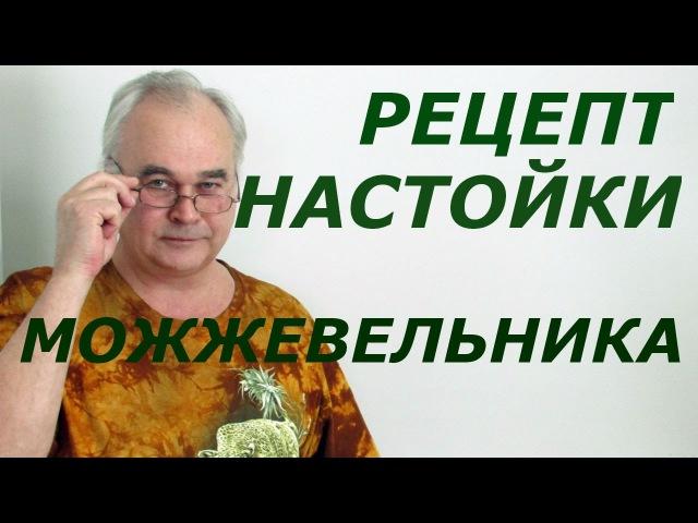 Настойка можжевельника - два рецепта Рецепты настоек Самогон Саныч
